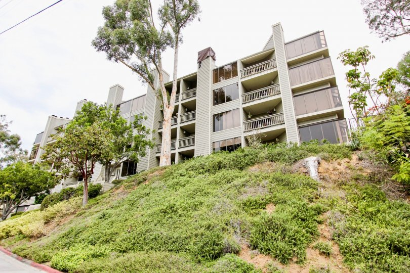 Wilshire on the Park ,North Park  ,California,hilly, off white building