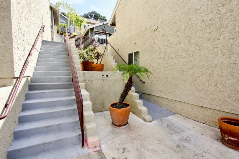 A long gray cement stairway lined with potted plants at Baay Pointe in Ocean Beach CA