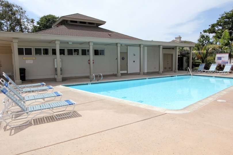 Swimming pool and relaxing chairs with good maintenance in Park Point Loma.