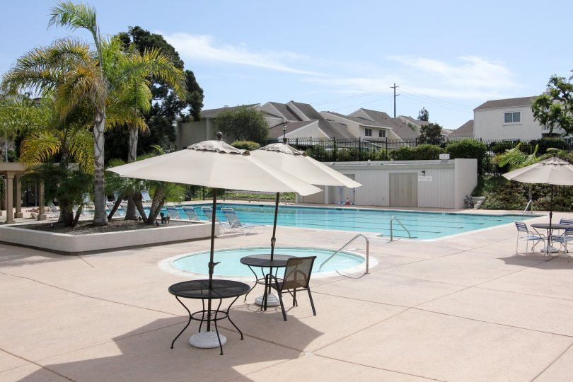 pool decorated with chair with umbrella and plants inside the compound in Park Point Loma