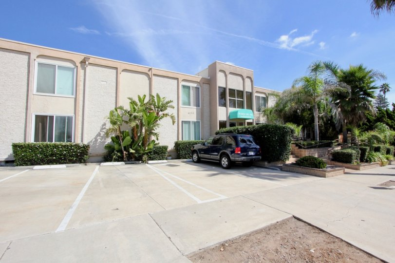 Large palm trees grace the entrance to this Puerta Del Sol Office building in Ocean Beach, CA with front door parking