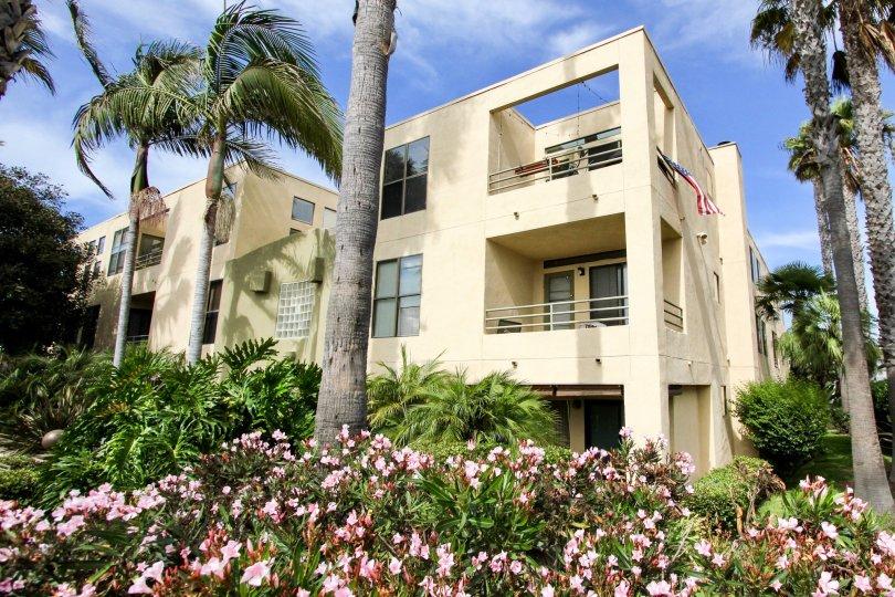 Three story beige building sitting behind pink flowers in the Vantage Point at Ocean Beach CA