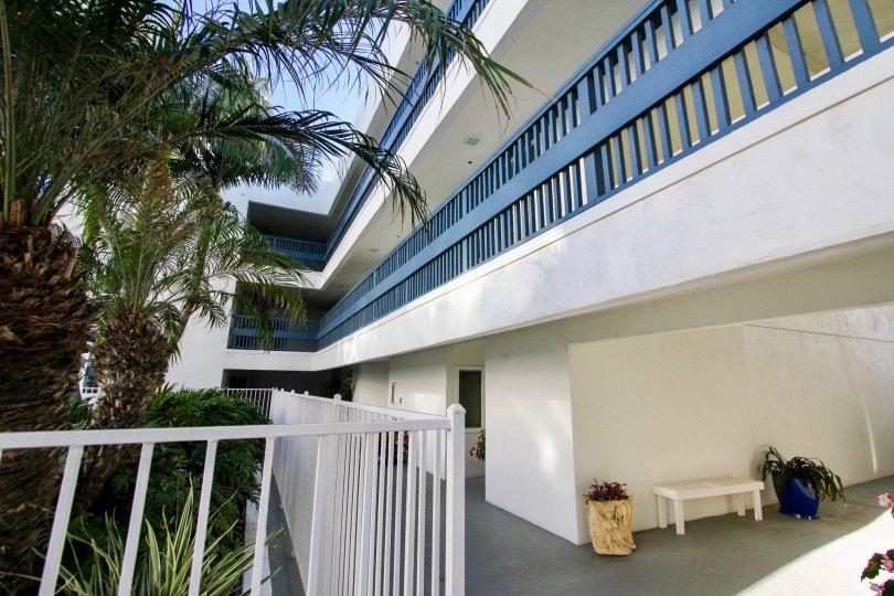 Aegea, Oceanside. California, trees, balcony, blue wooden railing