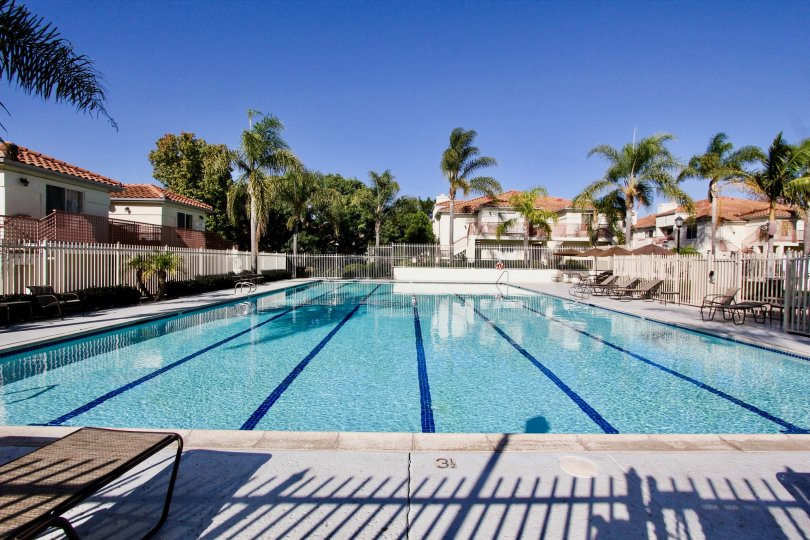 Beautiful Swimming Pool for the Community of Avalon At Eagles Crossing Oceanside, California