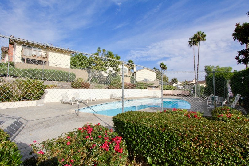 El Camino Club Estates, City: Oceanside, fencing and plants near swimming pool