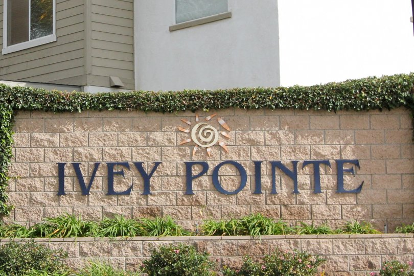 A sign for Ivey Pointe with a logo and decorative plants in Oceanside, CA