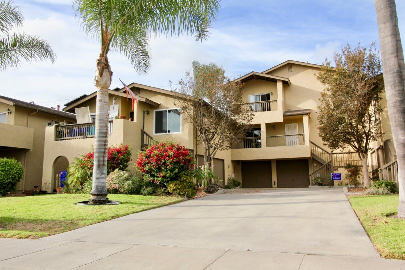 Lake Village Community in Oceanside, California, Palm Tree- Lined Street