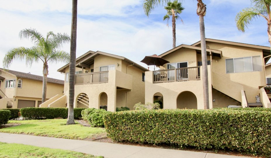 Houses and palm trees in Lake Village, Oceanside, California