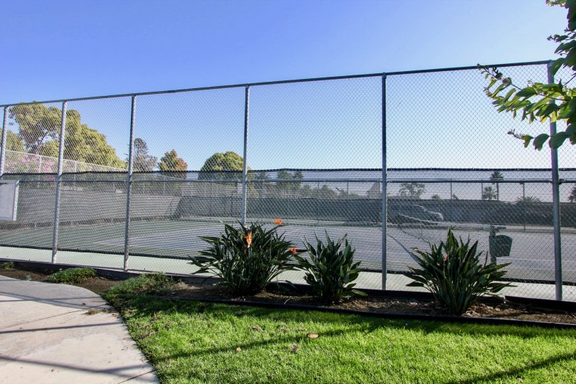 Private tennis courts at Las Brisas in Oceanside, California.