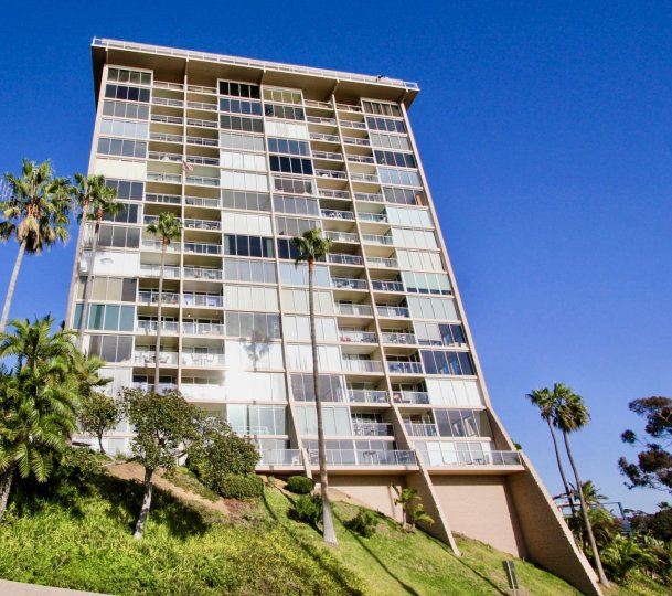Unobstructed views, with tall mature palm trees and ample windows for natural light at Marina Towers in Oceanside, CA