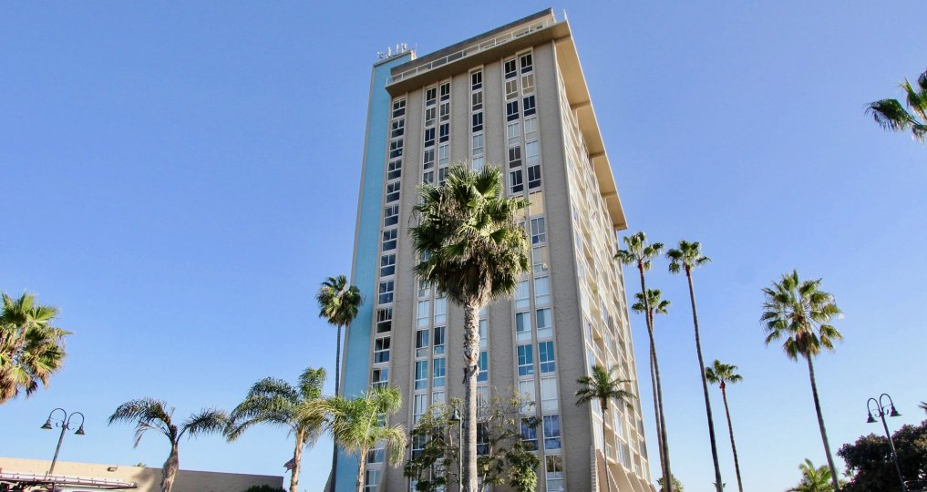 This tower stands high above the palm trees in Oceanside, California
