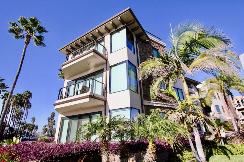 Three-story condos with large corner windows surrounded by palm trees at Montego Condominiums in Oceanside, CA