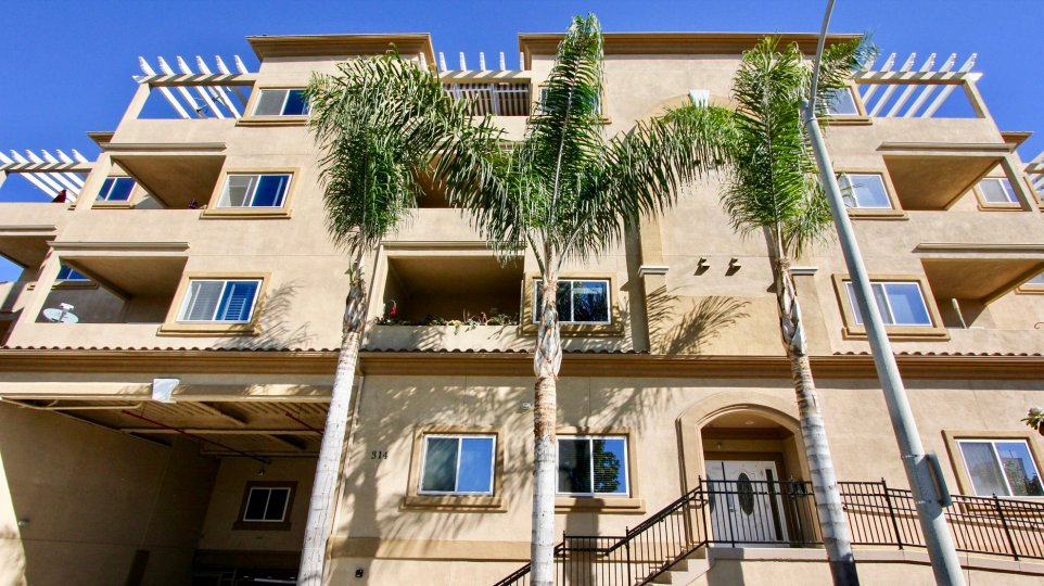 Three palm trees sit in front of the Nevada Manor condos