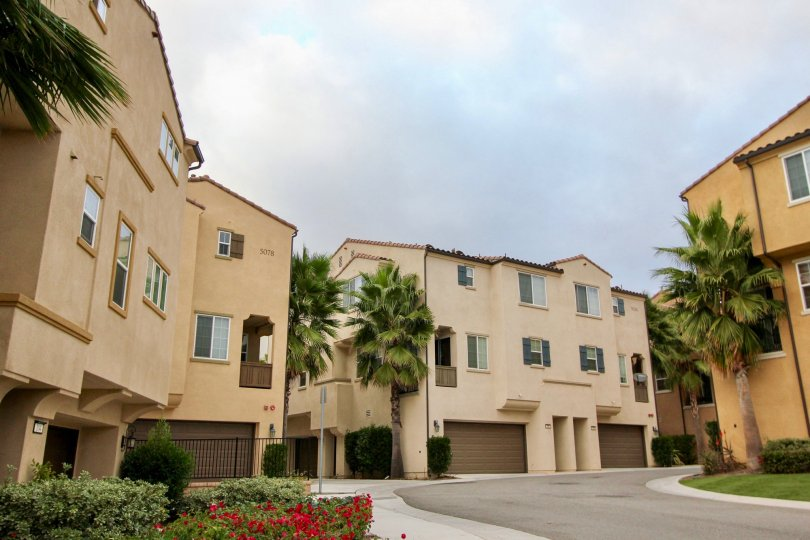 A sunny day in the area of North River Village, outside, condos, garage, window, palm trees
