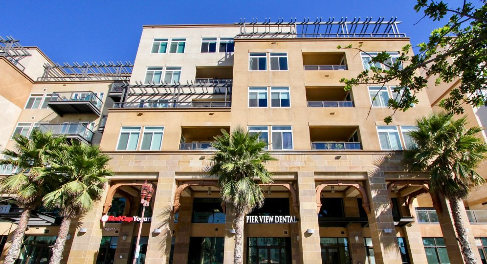 Modern looking apartments with access to food and dental amenities at Oceanside Terrace in Oceanside, CA