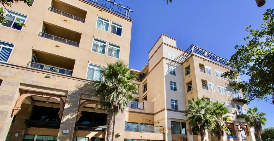 A high building sitting in the sun and surrounded by palm trees in Oceanside, California