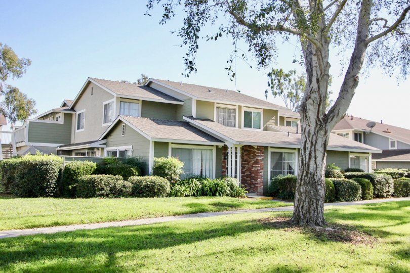 Enjoy life in your lovely neighborhood with large trees and landscaping at Park Circle.
