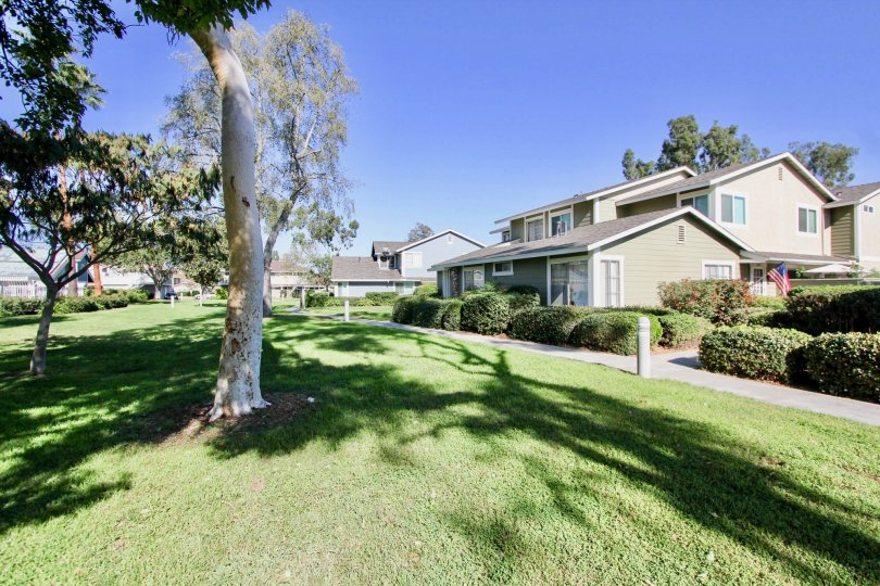 Grass yard with trees inside Park Circle at Oceanside California