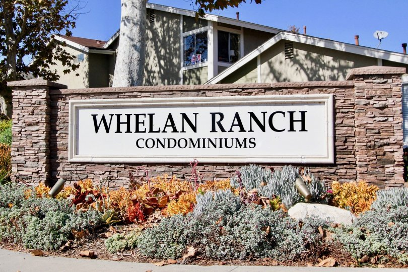 THE WHELAN RANCH CONDOMINIUMS IN THE PARK CIRCLE WITH THE PLANTS, TREES