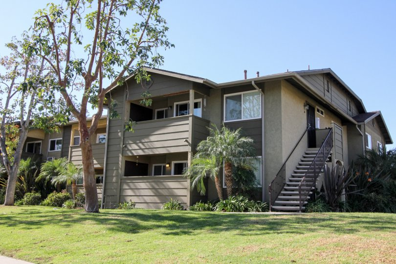 Two story condominiums with a tall tree out front in Oceanside CA at River Trail