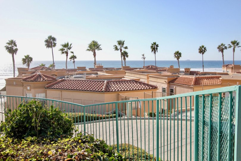 A sunny day in the area of San Miguel III, ocean view, palm trees, rooftops, fence, bushes
