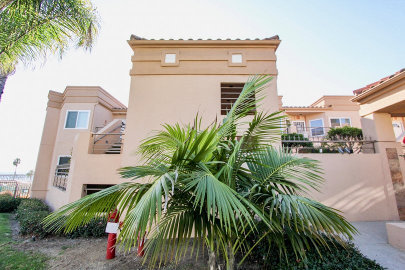 Two story housing structure behind palm trees in Oceanside California at San Miguel III