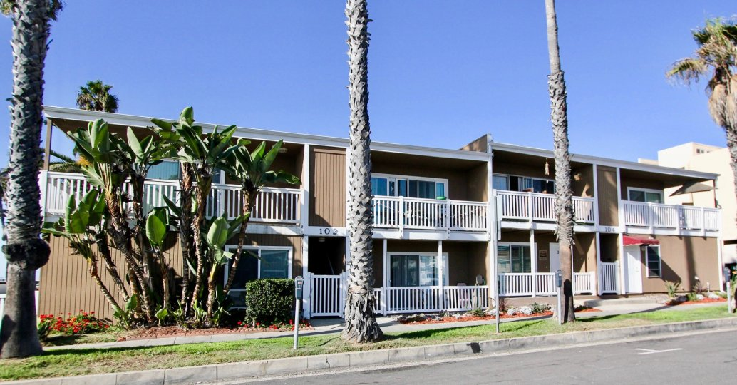 This apartment building is accented with lovely palm trees and other South-Western flora