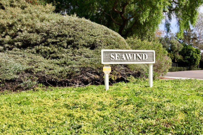 TheSeawind Oceanside is single level home sits on a corner lot with open yard and an ocean view from the living room, dining room, and master bedroom. 2 car attached garage with built in shelves.