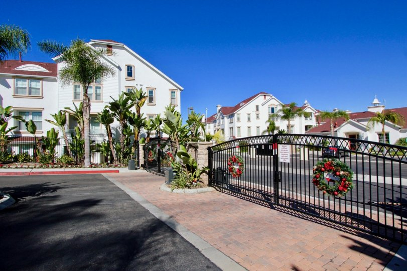 Live in the lap of luxury you dream of in Oceanside's Windward