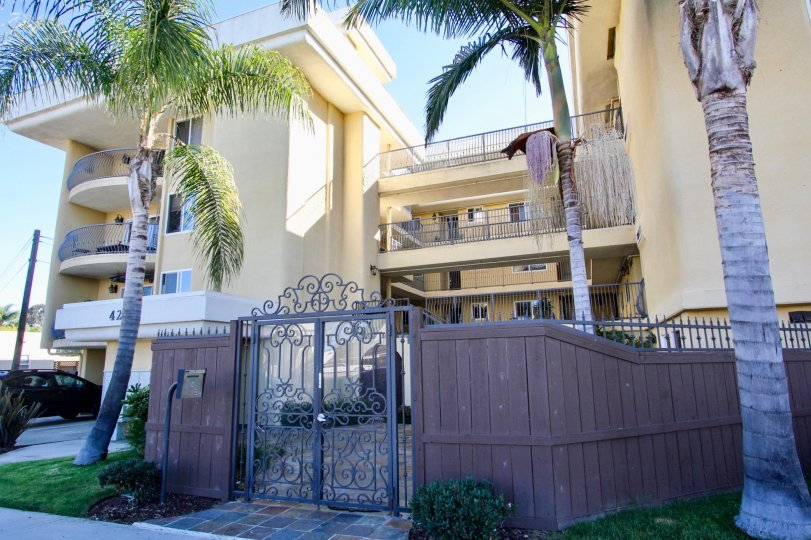 A sunny day in the area of Bayview Condos, outside, palm trees, gate, fence, car
