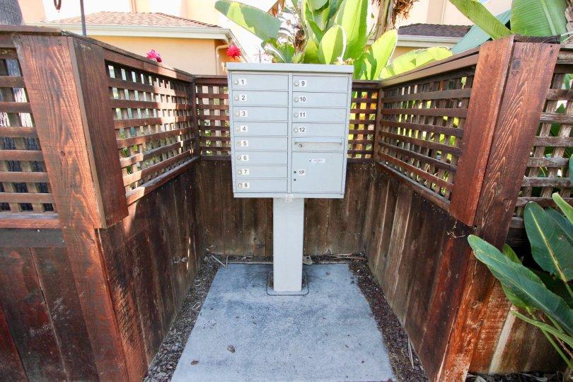 dreams homes at Diamond and Lamont at Pacific Beach, California