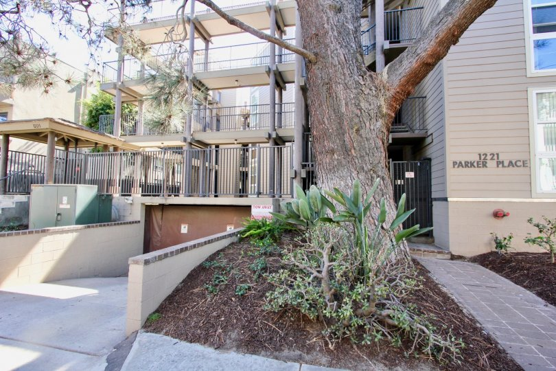 Entrance to apartment building with a metal gate and stone walkway at Mission Bay Parker Place in Pacific Beach, Ca.