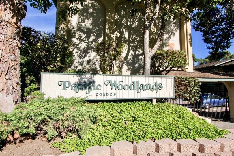 Serene, quiet condos in Pacific Woodlands of Pacific Beach, CA.