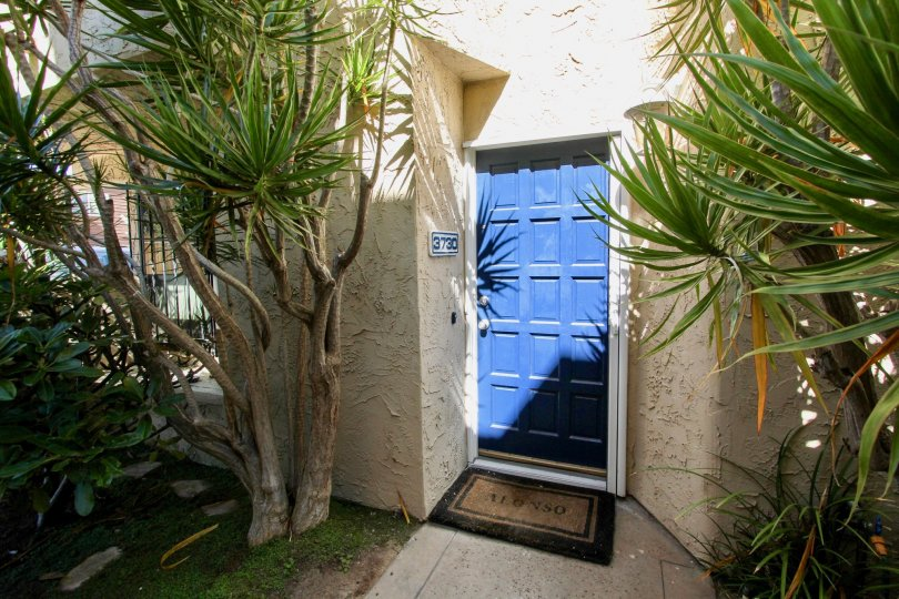 An entrance to a residence in the Promontory Townhomes with a blue front door and personalized rug.