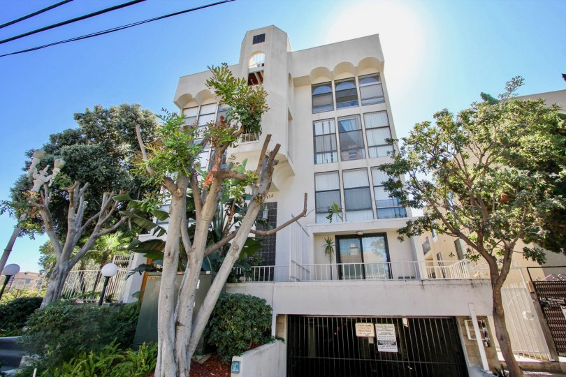 A modern, white apartment building in the San Remo neighborhood in Pacific Beach, CA with shrubs and trees
