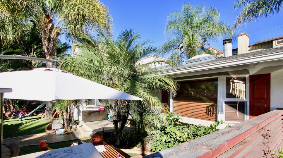a backyard of a home with a lot of palm tree and a white shade in Sunblend community