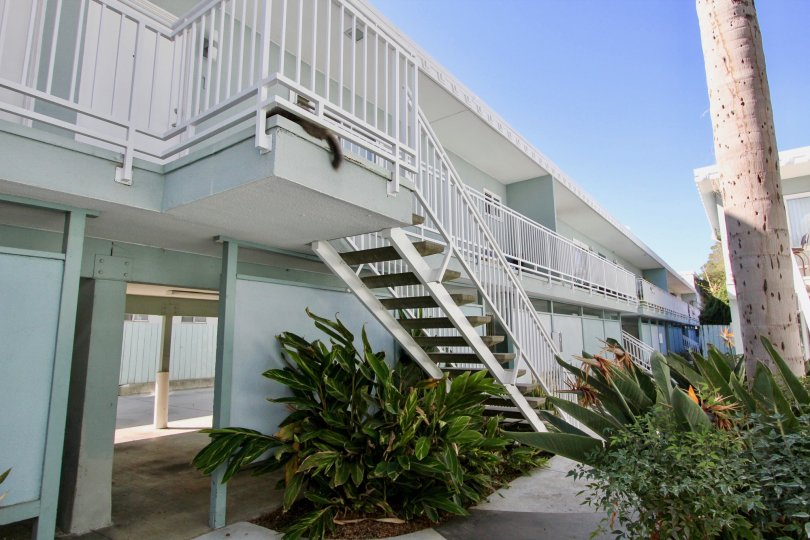 A two story beautiful apartment With carport and little yard in a nice Community