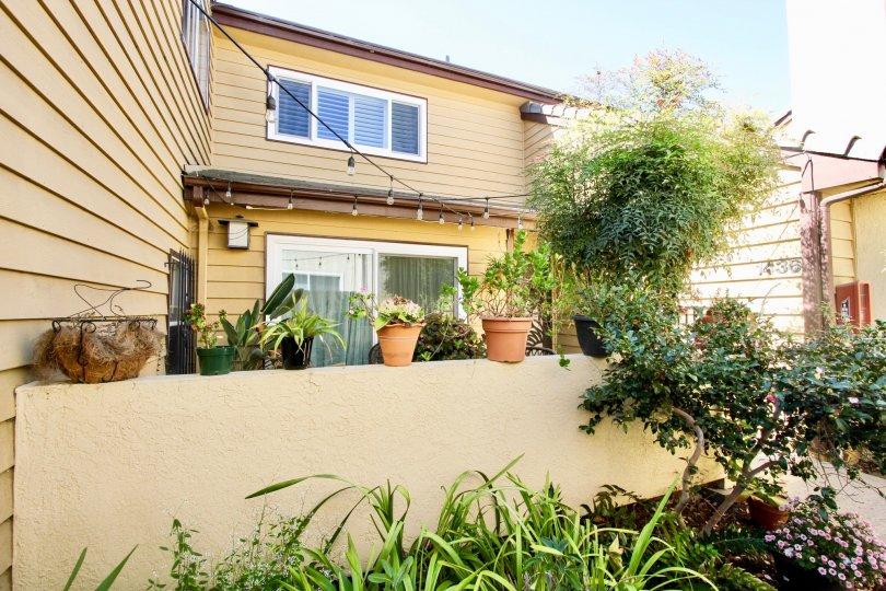 Villa with bright sunshine having garden in Thomas Beach of Pacific Beach