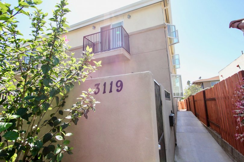 the back pathway of an apartment, with the unit number 3119, and a small plant in front, in Hugo Street Condos, Point Loma, California