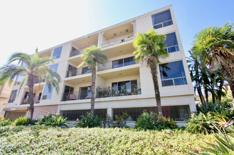Shuttered shops beneath multi-unit dwellings with balconies surrounded by palm trees in Point Loma, CA