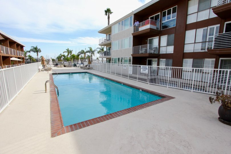 Private fenced-in swimming pool with sizeable pool deck surrounded by palm trees at Yacht Club Condos