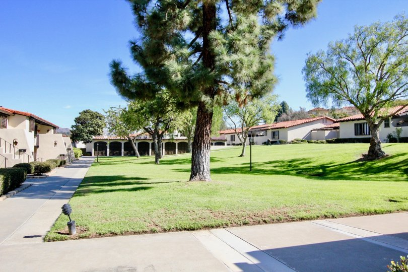 Park surrounded by residential units at Bernardo Villas in Rancho Bernardo CA