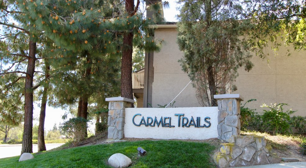 A sunny day in Carmer Trails villa with long trees, grasses and bushes