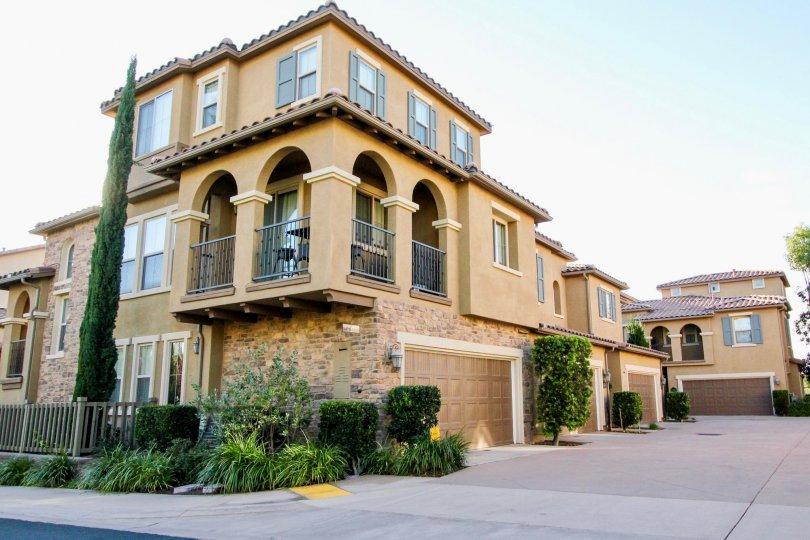 Mandolin II, City: Rancho Bernardo, backside of the building with beautiful ashoka tree