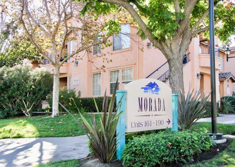 Morada, City: Rancho Bernardo, backside of the building