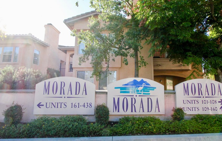 Morada, City: Rancho Bernardo, morada, units 161-438