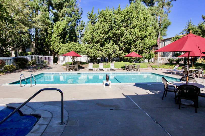 Swimming pool along with baby pool with ample chairs and tables of One Oaks North.