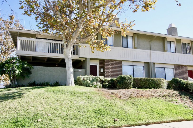 A sunny day in Playmor of Rancho Bernardo with apartment, trees and grasses