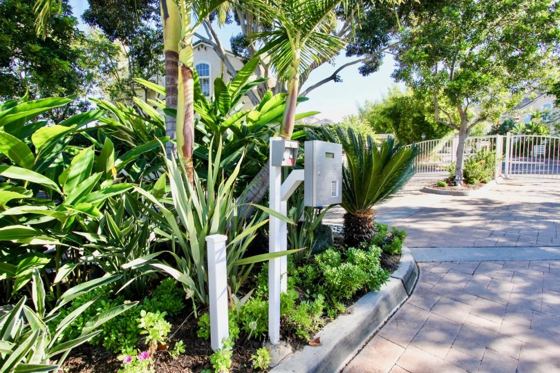 Silver intercom near green plants at Provencal in Rancho Bernardo California