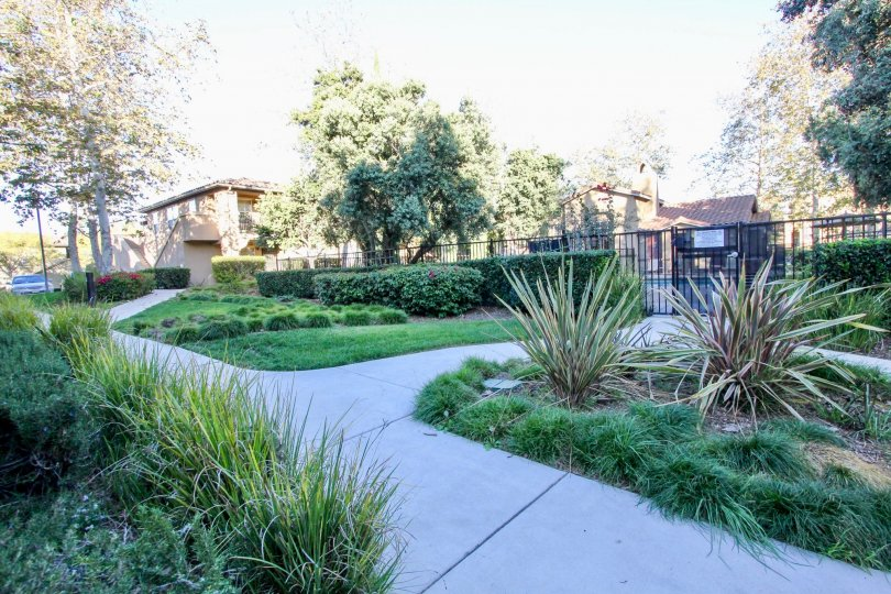 A lush and beautiful garden outside a gated community in rancho bernardo